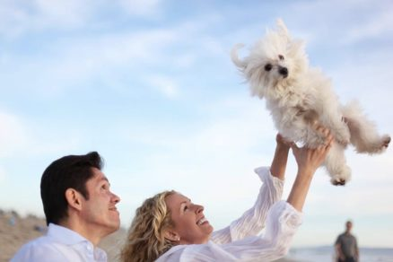 Can I include my pets in a living trust?
